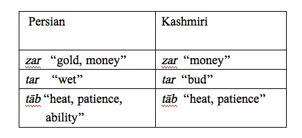 kashmiri language example 8