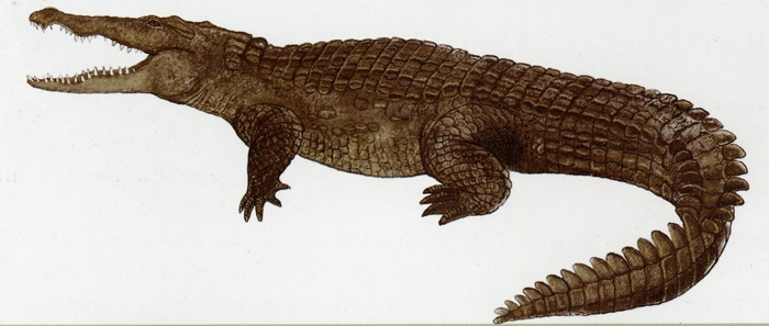 crocodile encyclopaedia iranica